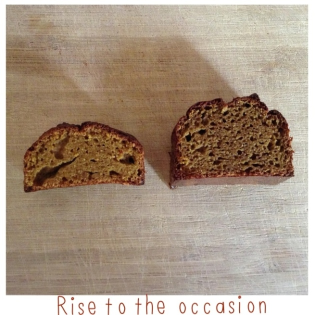 gluten_free_ginger_bread_bicarb_no_bicarb.JPG